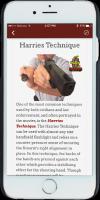 iPhone_Screens_Articles